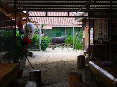 ノースLC石垣島200911 017.jpg