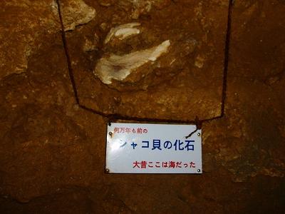 ノースLC石垣島200911 107.jpg