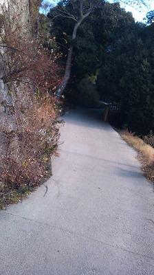 登り道その1.jpg